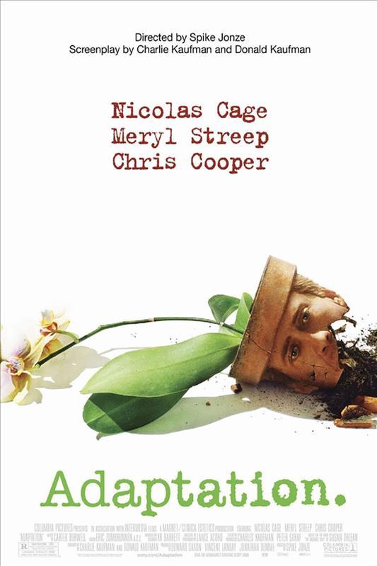 Affisch för Adaptation