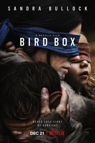 Affisch för Bird Box