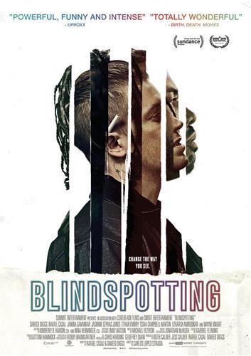 Affisch för Blindspotting