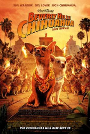 Affisch för Chihuahuan Från Beverly Hills