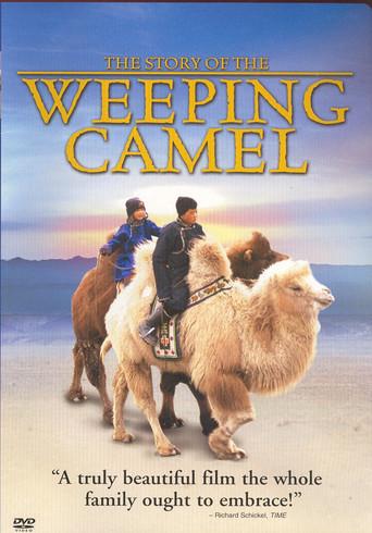 Affisch för Den Gråtande Kamelen