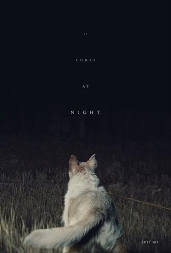 Affisch för It Comes At Night
