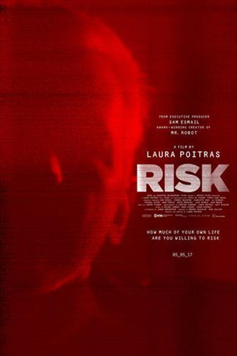 Affisch för Risk